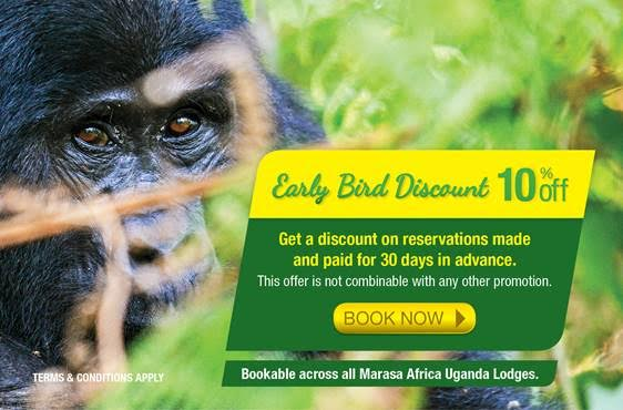 Early Bird Discount: Get a discount on reservations made and paid for 30 days in advance.
